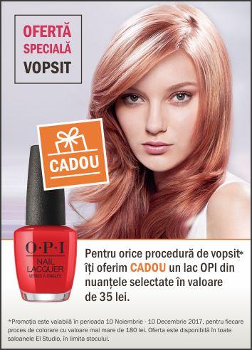 Oferta speciala VOPSIT + CADOU